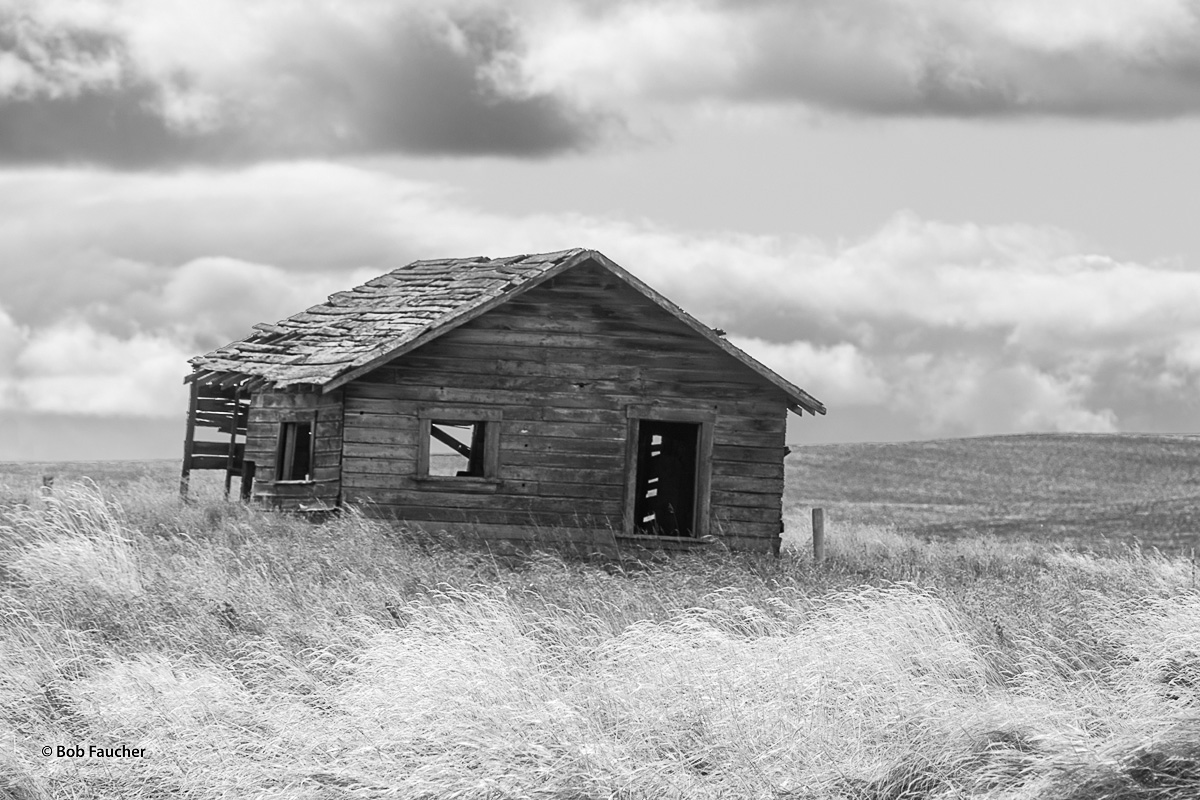 Amidst the rolling hills near Ferdinand, Idaho, a small farm outbuilding sucumbs to neglect