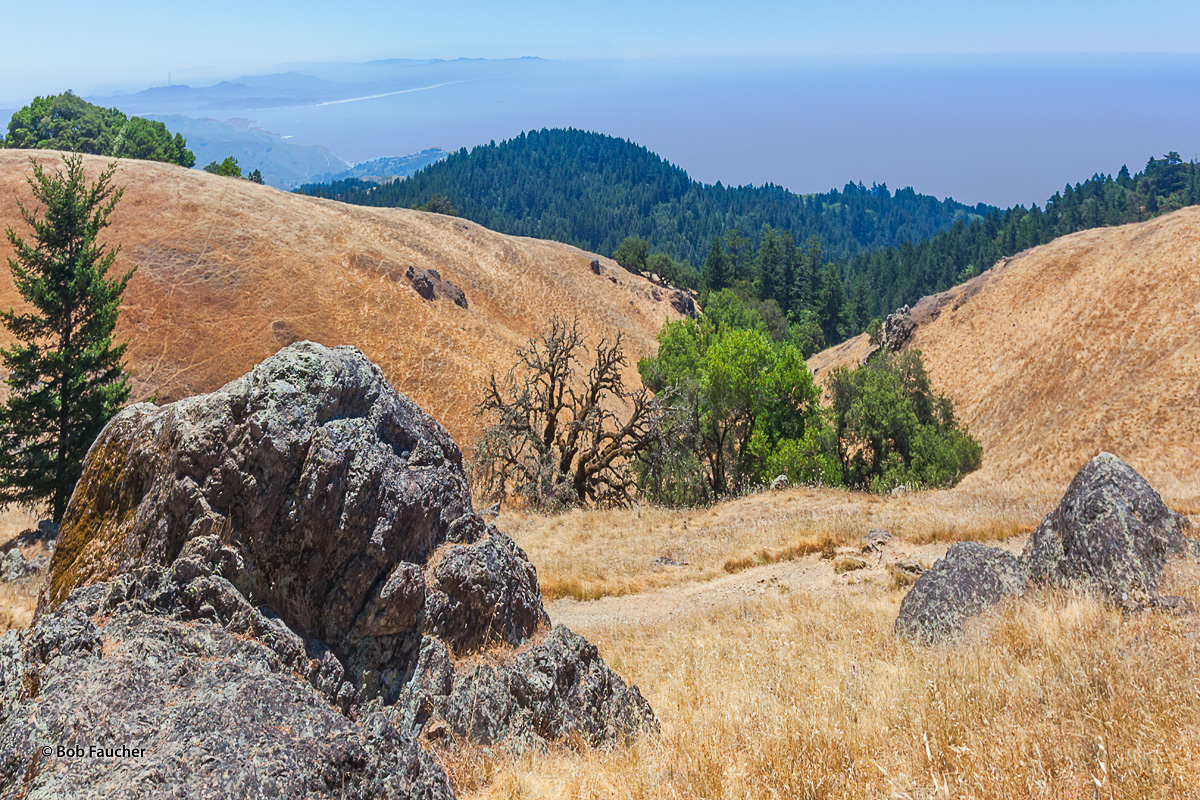 The relatively steep descent from Mt. Tamalpais to Stinson Beach provides a commanding view of the California coastline, extending...