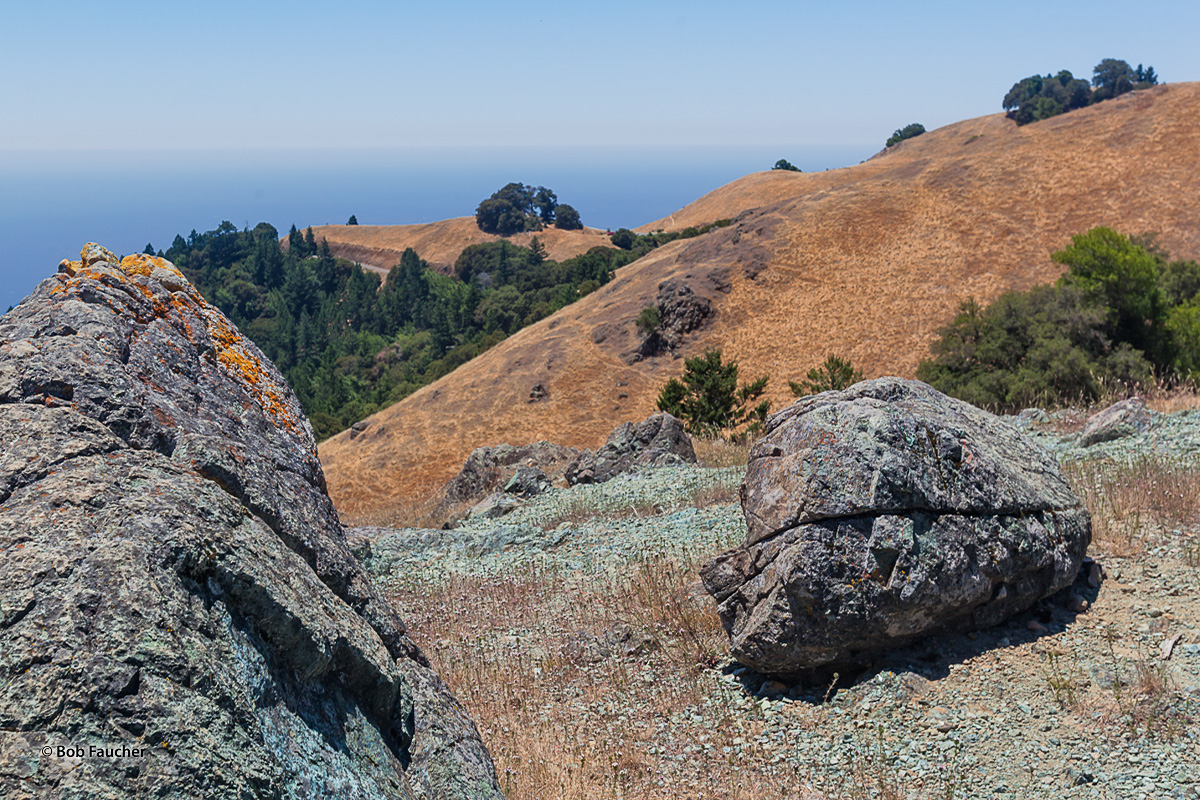 The rolling hills of Mount Tamalpais State Park, high above the Pacific Ocean, are dotted with outcrops of stone, oaks and a...