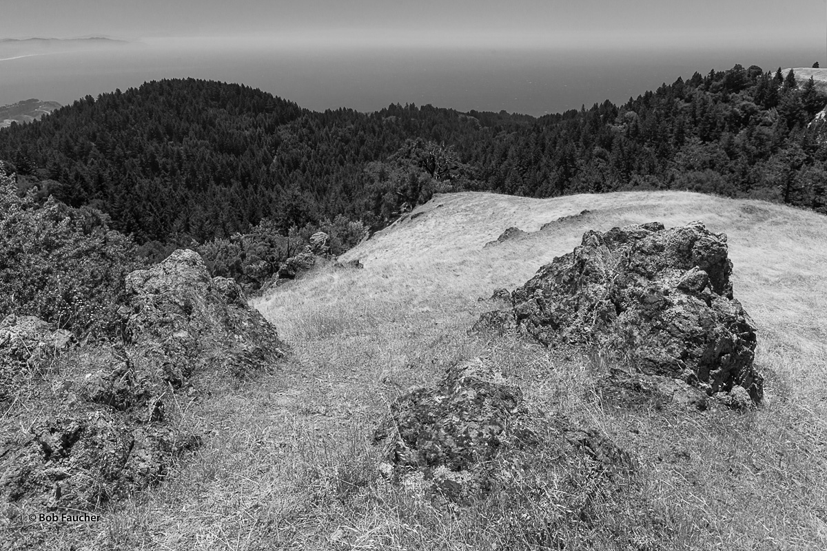 View of the Pacific from atop Mt. Tam. Coast shoreline, shrouded in fog that extends across the horizon, is just visible. Greenschist...