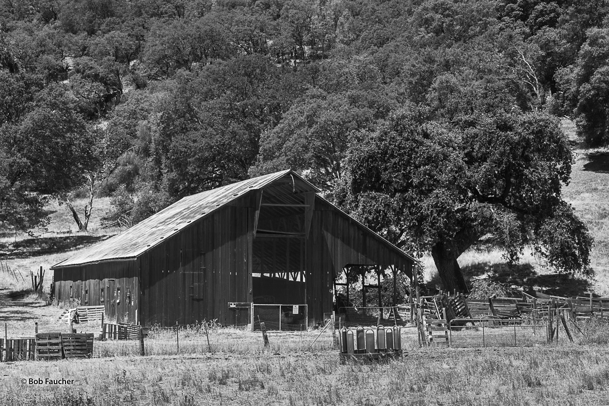 Clearlake Oaks is a small town in Lake County, California. This old barn is a testament to the more recent history of the area...