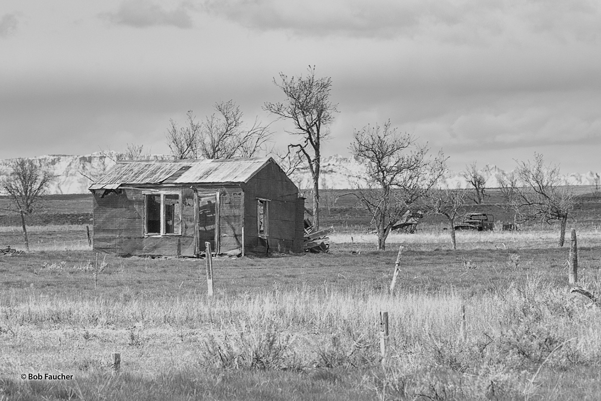 Ramshackle building and pickup truck near Conata, along Highway 44, midway between Scenic and Interior.