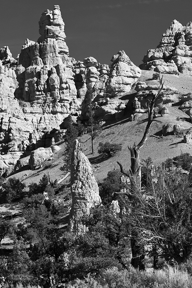 The rocks in Red Canyon are eroded into the familiar pinnacles, spires, columns and hoodoos also found in Bryce Canyon a few...