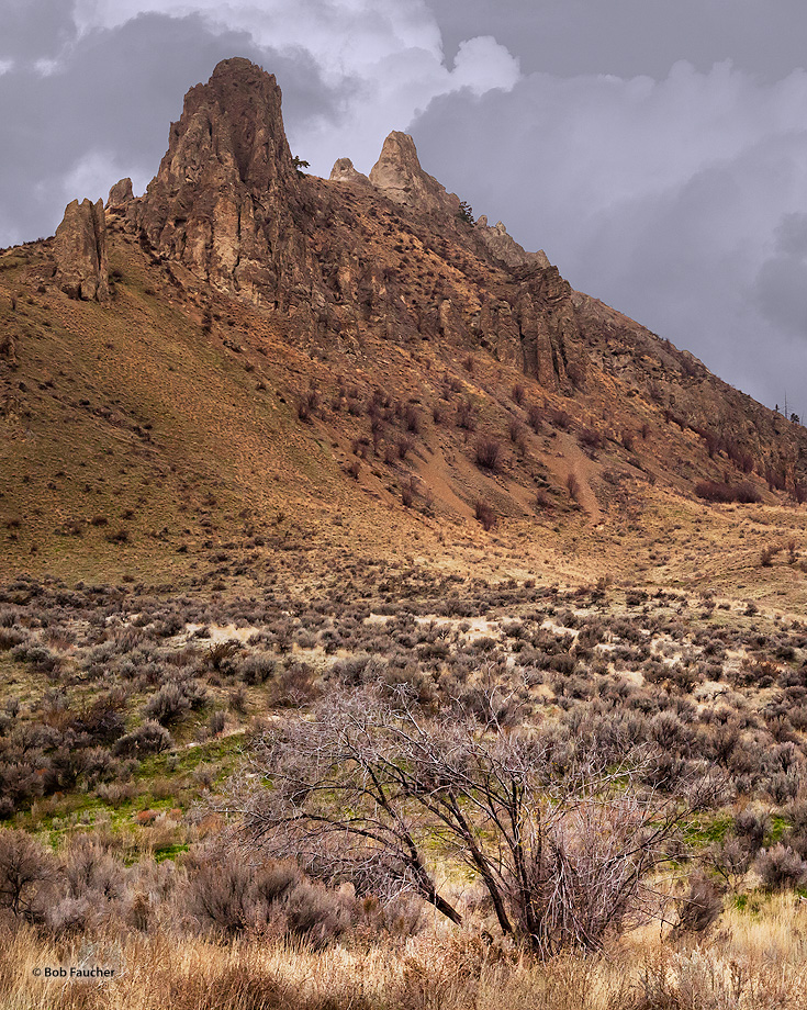 Saddle Rock is a Wenatchee landmark and a wonder to see. The real treat, though, is the panoramic views from the top—the North...