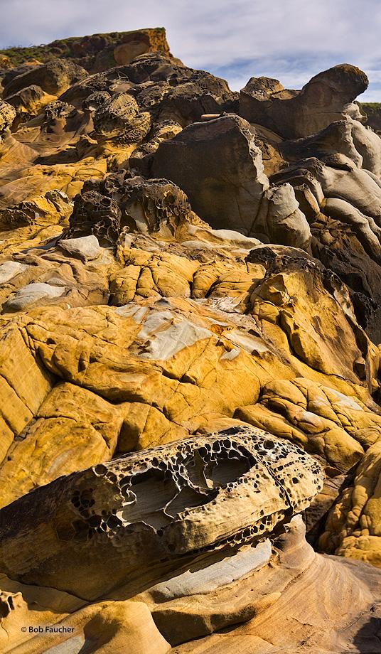 Salt Point SP,tafoni,headlands, photo