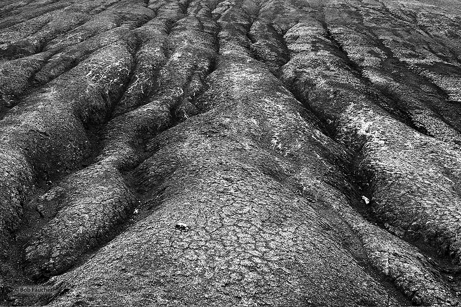 The bentonite flanks of Red Hill, carved by the erosive forces of water, are dried and cracked by the wind and sun.
