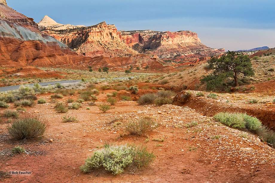 Capitol Reef,Utah,Slickrock Divide,Ferns Nipple, photo