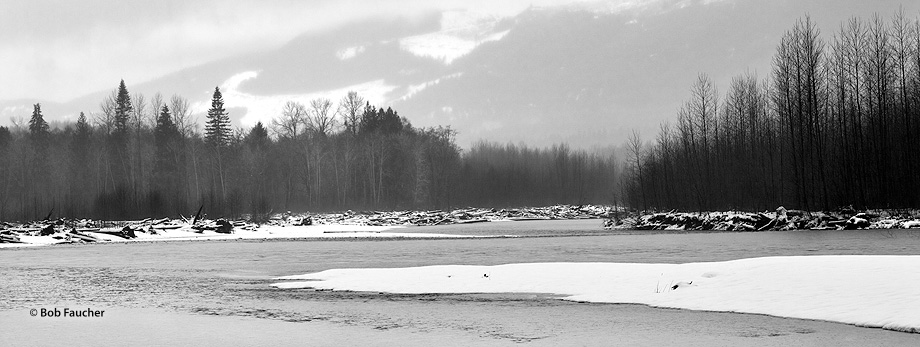 The Sauk River drains an area of the high Cascade Range in the watershed of Puget Sound north of Seattle. Winter snows in the...