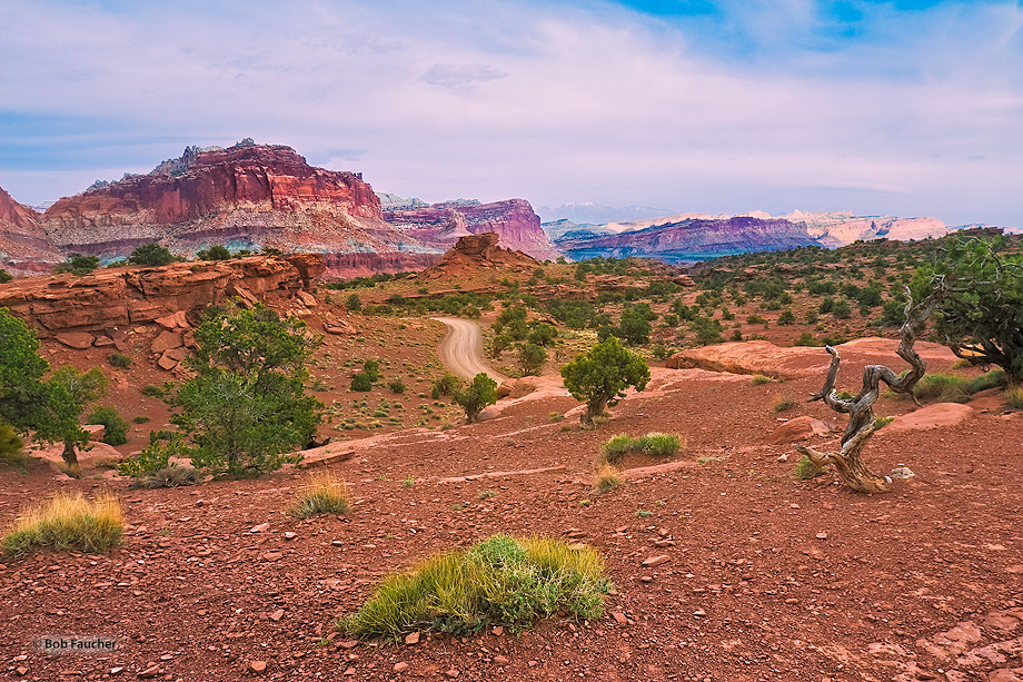 Capitol Reef,Utah,Panorama Point,Spring Canyon, photo