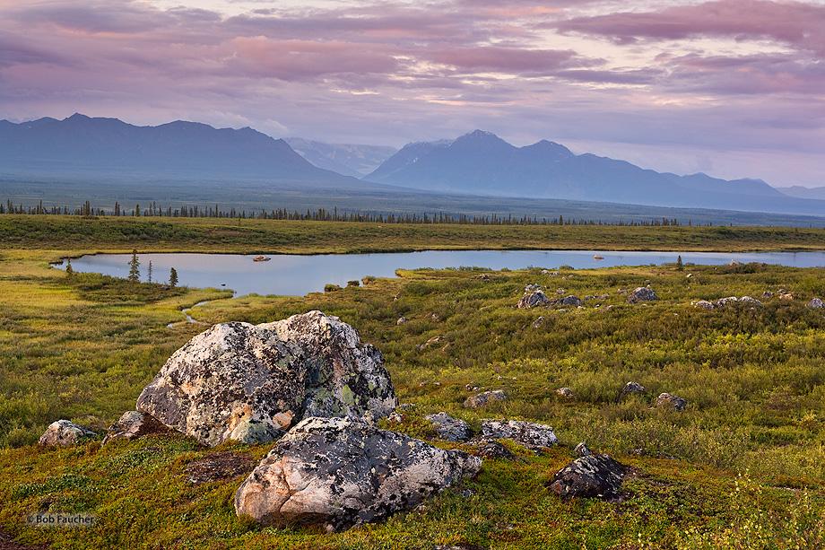 Denali Hiway,mile 103,tarn,Alaska Range,Alaska, photo