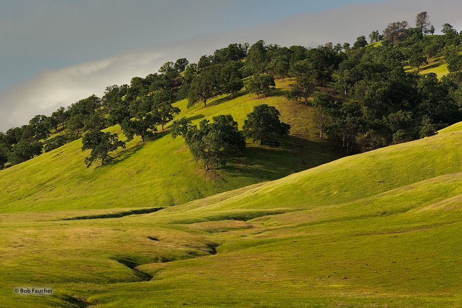 Early morning light washes the rolling hills along Spring Valley