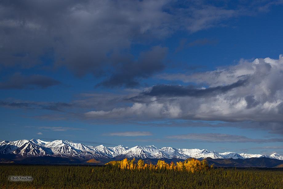 Kluane NP,St. Elias Mountains, photo
