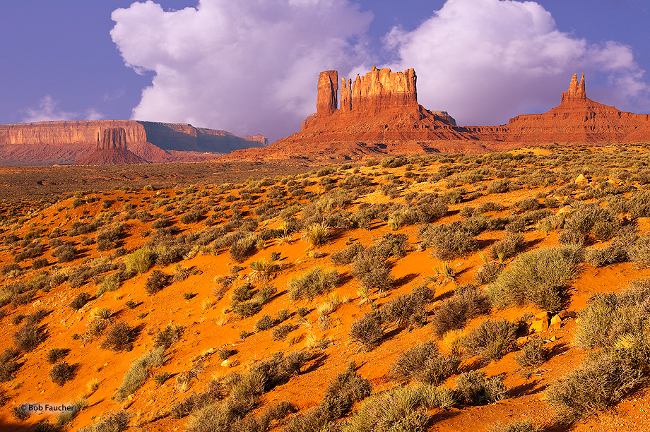 Monument Valley,Conical Butte,East Mitten Butte,Stagecoach,Bear and Rabbit Summit,morning, photo