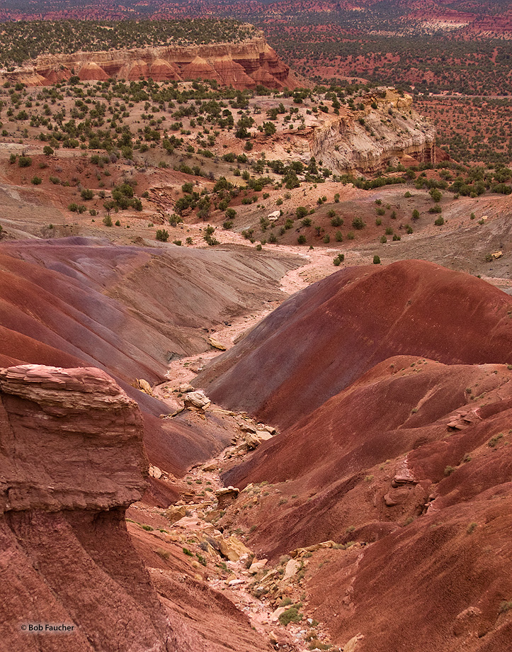 A lengthy ridge of red Wingate sandstone that curves right to the east and forms the near edge of Capitol Reef. The rocks of...