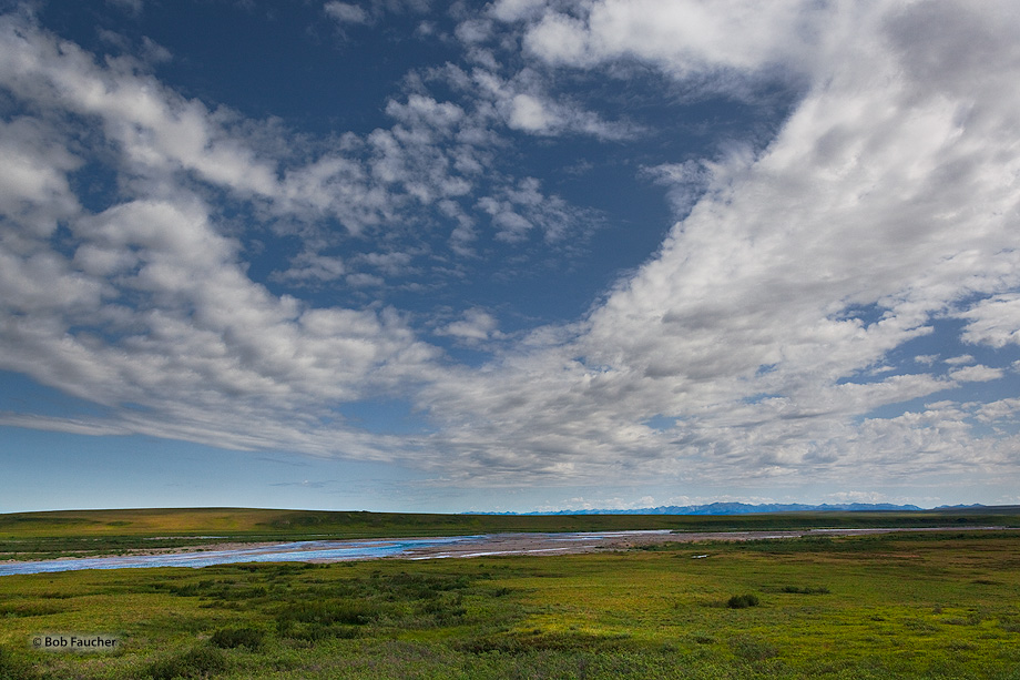 Toolik River is a fine example of a beaded tundra stream. Channels with regularly spaced deep and elliptical pools connected...