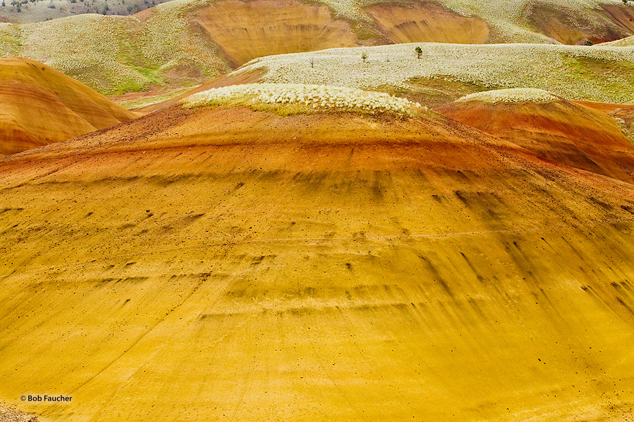 John Day Fossil Beds NM,Painted Hills unit,bentonite, photo