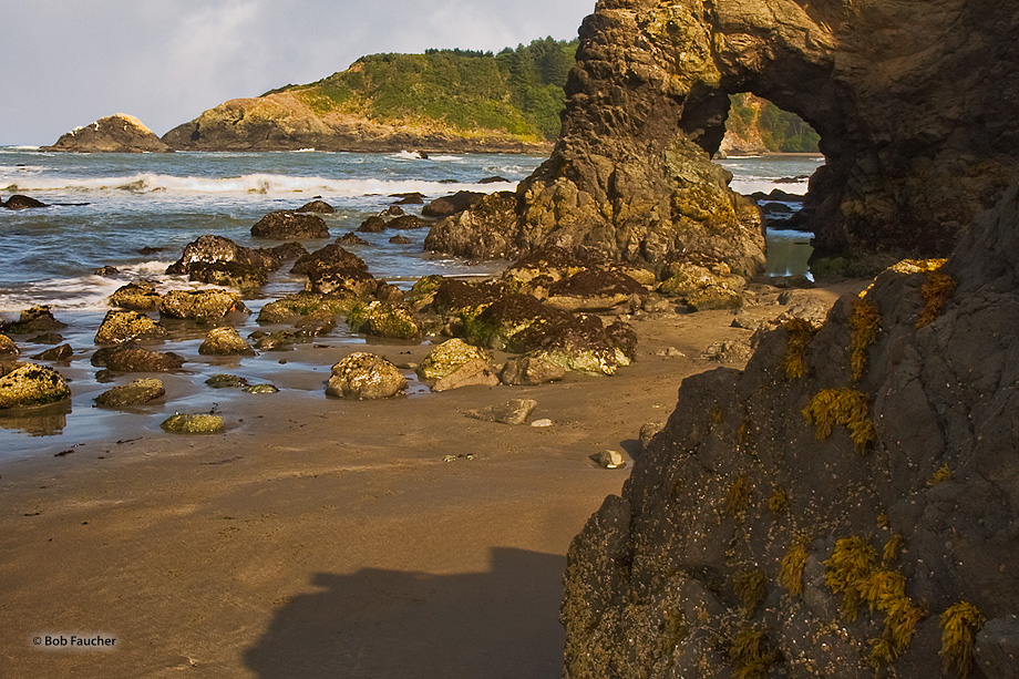 A small arch, only accessible at low tide, has formed on the headlands of Trinidad Beach.