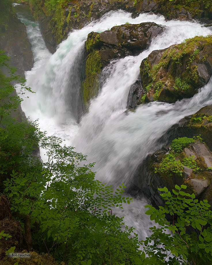 Sol Duc Falls,Olympic NP,rain forest, photo