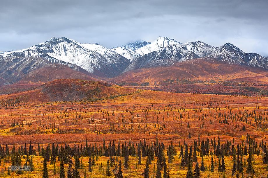 Taiga,tundra,Chugach Mountains,Glenn Hiway,Alaska, photo