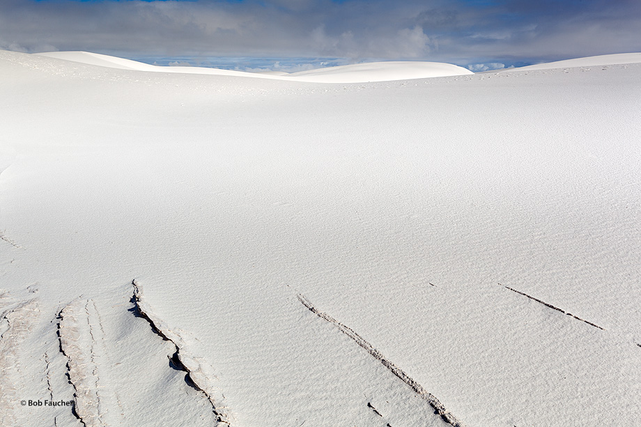 White Sands NM,razorbacks, dunes, photo