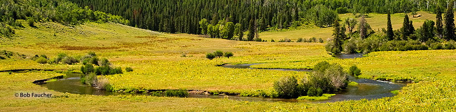 Steamboat Springs,Yampa River,Pleasant Valley, photo